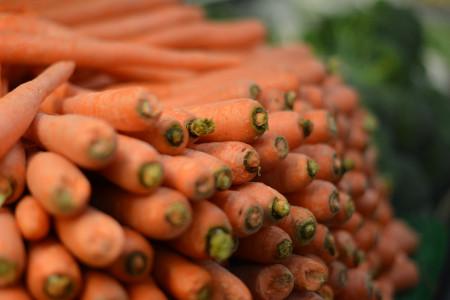 verdura per il comune di Prato